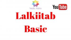 Lal Kitab Basic